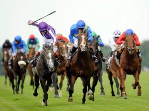 aposta de cavalo