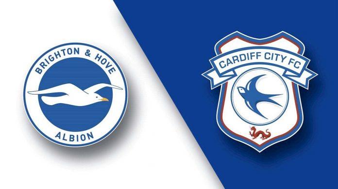 Brighton x Cardiff